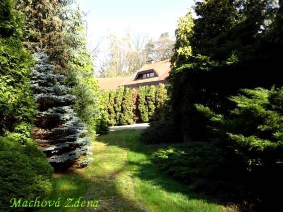 zahrada malého domu